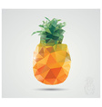 Geometric polygonal fruit triangles pineapple vector image vector image