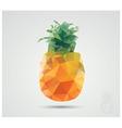 geometric polygonal fruit triangles pineapple vector image vector image