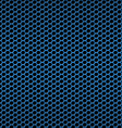 pala blue vector image vector image
