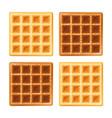 belgian waffle vector image