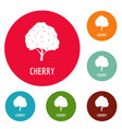 cherry icons circle set vector image vector image