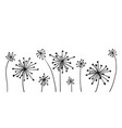 graphic with set dandelions vector image