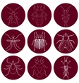 insect icons set Earwig and tick stink bug and vector image vector image