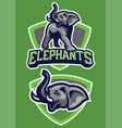 sport mascot elephant vector image vector image