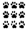 black footprints leopard vector image vector image