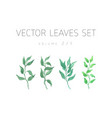 bright watercolor set of leaf vector image vector image