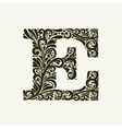 Elegant capital letter E in the style Baroque vector image vector image