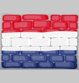 flag of netherland painted on brickwall vector image vector image