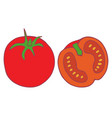 isolated flat tomato vector image vector image