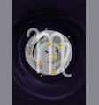 zodiac virgo sign a4 print poster with vector image vector image