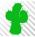 cacti eps icon vector image