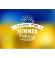Enjoy Summer Holidays poster vector image