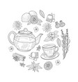 herbal tea elements round shape cafe vector image vector image