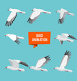 key frames of animation flying bird vector image