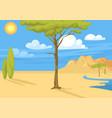 australia wild background landscape cartoon