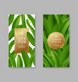 banners with tropical leaves vector image vector image