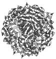 Black and White Leaves Wreath Design vector image