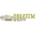 foods with calcium text background word cloud vector image vector image