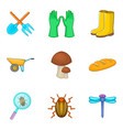 research beetles icons set cartoon style vector image vector image