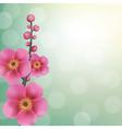 Sakura Flowers With Bokeh vector image vector image