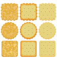 set of cracker chips vector image vector image
