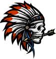 skull an indian warrior vector image vector image