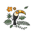 toucan paradise tropical bird for your design vector image vector image