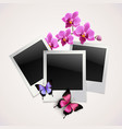 Butterflies photo frames vector image vector image