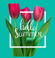 hello summer natural background vector image vector image