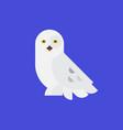 logo white owl a polar owl icon flat vector image vector image