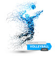 volleyball dot on the white vector image