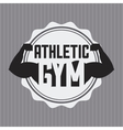 gym design vector image vector image