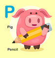 isolated animal alphabet letter p-pig pencil vector image vector image