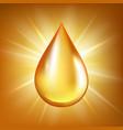 oil drop gold transparent liquid organic water vector image vector image