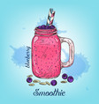 sketch blueberry smoothie in jar isolated on vector image