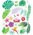 Tropical leaf and flowers vector | Price: 3 Credits (USD $3)