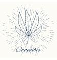 cannabis and vintage sun burst frame vector image