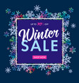 elegant winter sale banner on colored snowflakes vector image