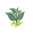 green leaves plants simple flat vector image