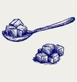 Refined white sugar vector image