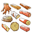 wood logs and stubs set natural wooden elements vector image vector image