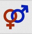 gender symbol vector image vector image