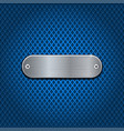 metal oval plate on blue perforated background vector image vector image