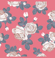retro floral seamless pattern white roses vector image