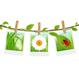 Summer Photos With Clothespins vector image vector image