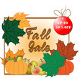 banner for a fall or autumn sale vector image