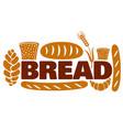 bread and bakery logo vector image vector image
