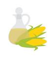corn organic oil in glass bottle vector image vector image