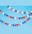 garlands color flags celebration american vector image vector image
