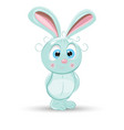 rabbit bunny funny happy vector image